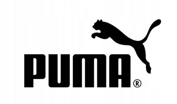 T-shirt koszulka chłopięca PUMA 852542 niebieska